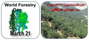 روز جهانی جنگل - 21 مارس