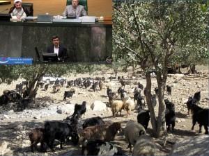 محمود احمدینژاد در مجلس