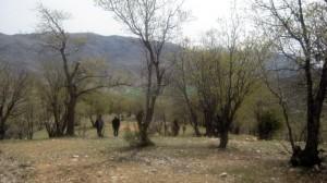 منطقه حفاظت شده هلن
